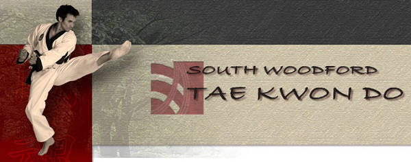 South Woodford Tae Kwon Do header image